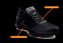 Кроссовки Ecco Biom – отзывы, купить, распродажа, цена