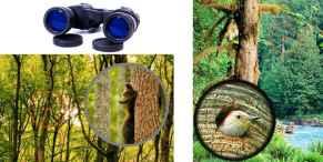 Бинокль Canon 60x60 - отзывы владельцев, цена, где купить