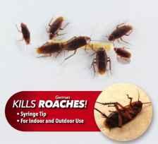 Роуч доктор от тараканов.