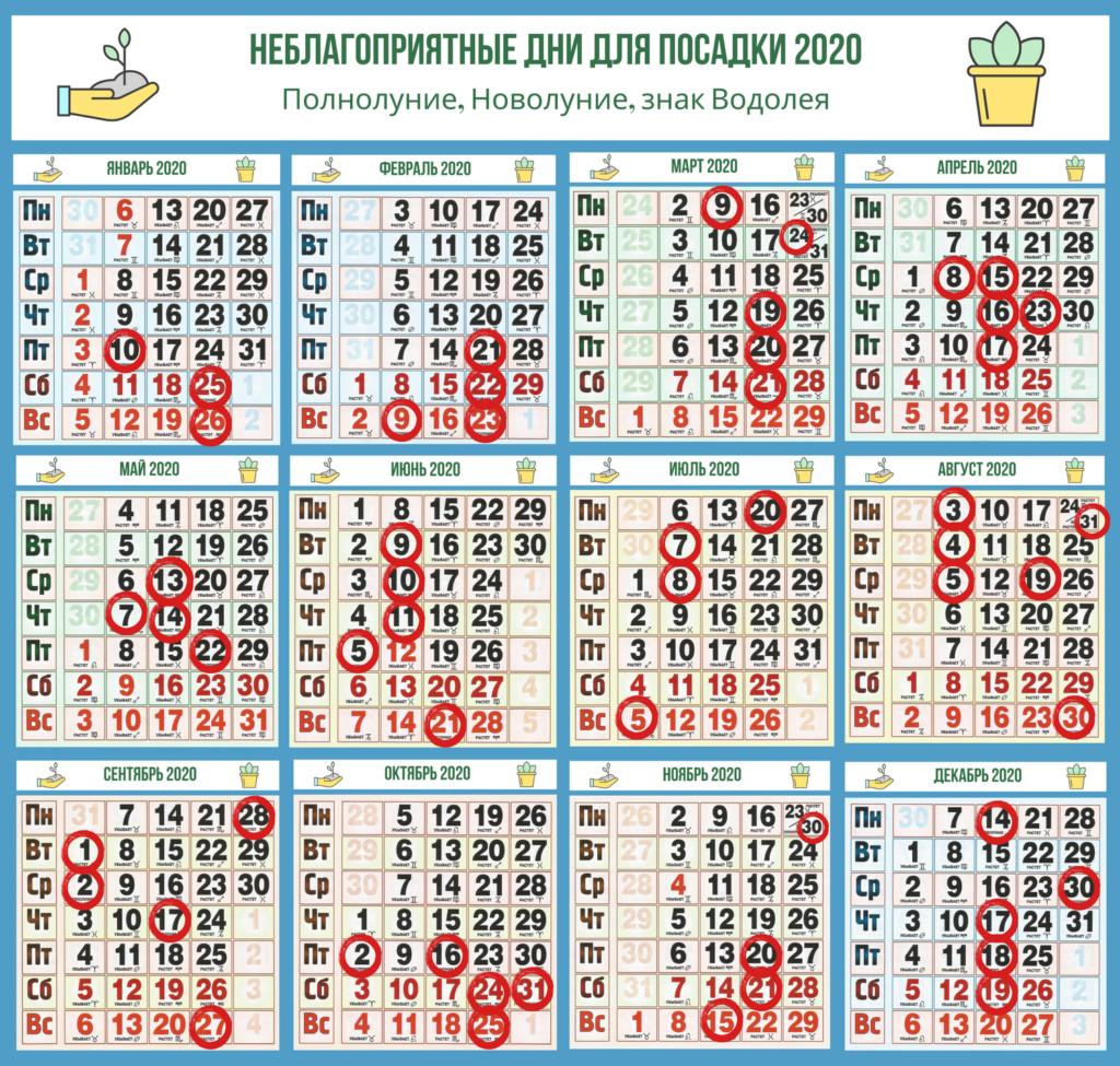 neblagopri-1024x975-5546973-3525857